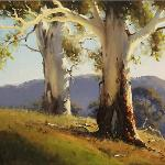 Gums near Brungle NSW  -  60 x 45  © Copyright John Wilson