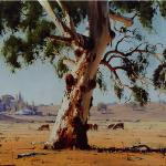 Brungle Gum  -  110 x 90  - Copyright John Wilson