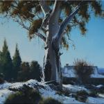 Early Snowfall - Katoomba  -  50 x 50  © Copyright John Wilson