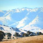 In the Tumut Hills 60cm X 60cm $2800