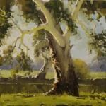 Murray River Gum Albury NSW 30cm X 30cm  $950 Sold